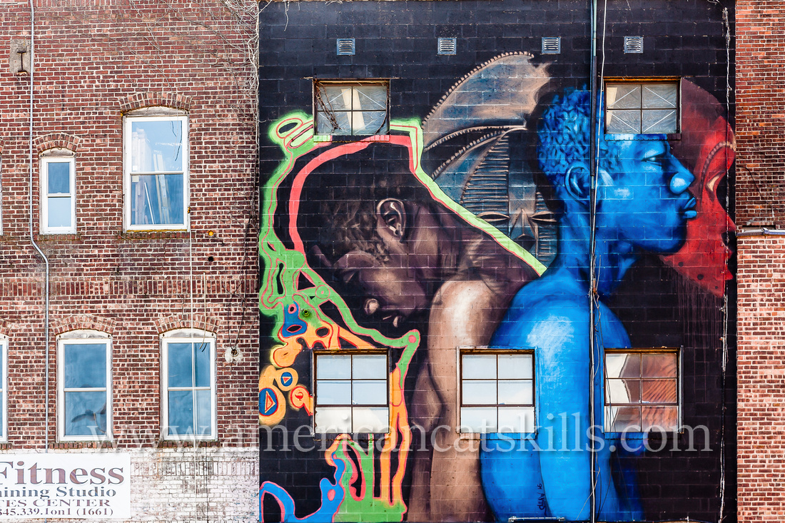 The large scale mural titled Know Thyself was created by artist and Baltimore resident Ernest Shaw, Jr. in 2015 as part of the 6th annual O+ festival.
