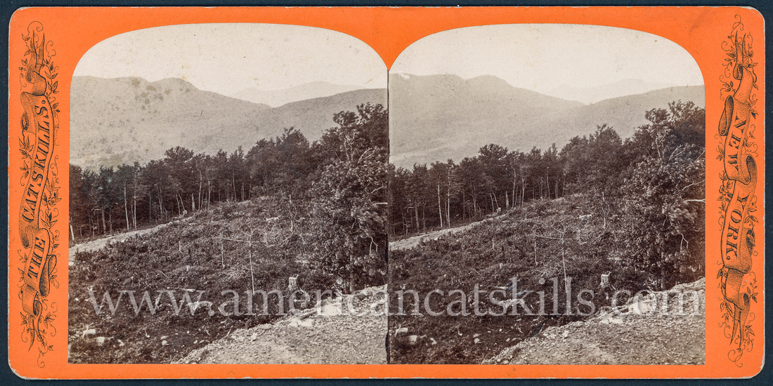"""Vintage John Jacob Loeffler stereoview titled """"View from the Overlook"""" from the """"Catskill Mountain Scenery"""" series; no series listed, # 363."""