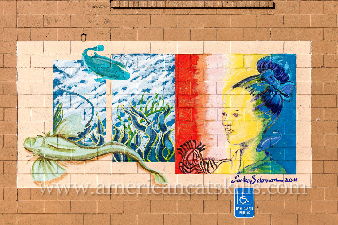 """The mural titled """"M'YMCA"""" adorns the YMCA building in Kingston, New York; and was created by Woodstock artist Julia Santos Solomon."""