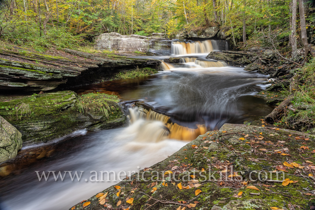 Birchall Falls is a scenic waterfall located on the West Branch of the Beer Kill in the hamlet of Greenfield Park in southern Ulster County, New York.
