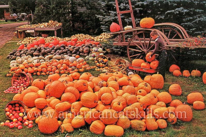 "Vintage postcard title ""Harvest Time"" by famed photographer Bob Wyer of Delhi, New York."