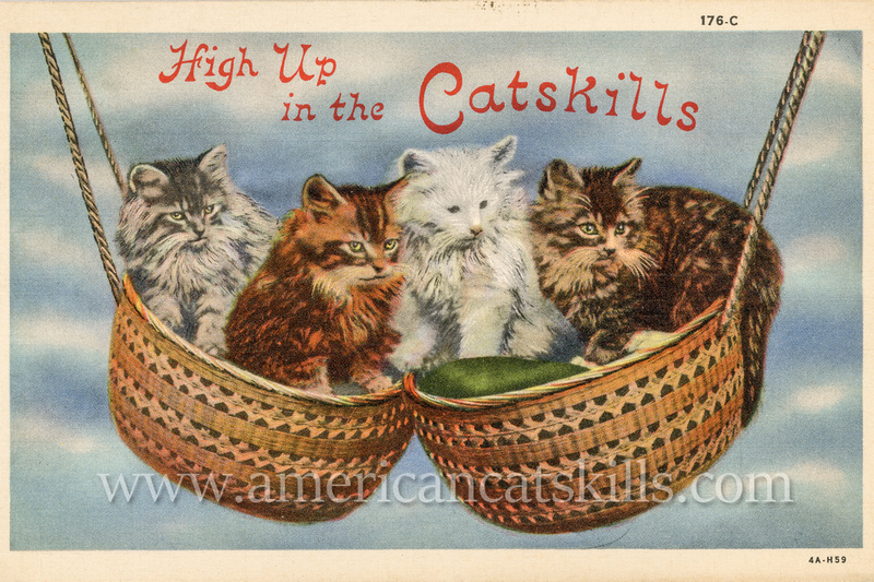 Vintage Catskills postcard depicting four cats enjoying themselves as they go for a ride in a double set of basket swings.