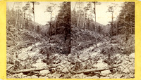 "Vintage E. & H. T. Anthony & Co. stereoview #166 titled ""Sleepy Hollow – Catskill Mountains"" in ""The Artistic Series."""