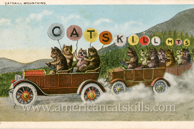 Vintage Catskills postcard that shows two cars full of cats as they drive along a dirt country road with balloons that advertise that they are headed for the Catskill Mountains.