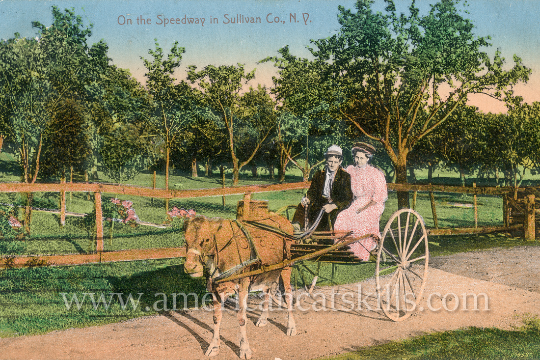 Vintage postcard from photographer Otto Hillig depicting a well-dressed couple out for a ride in their cow-pulled carriage.