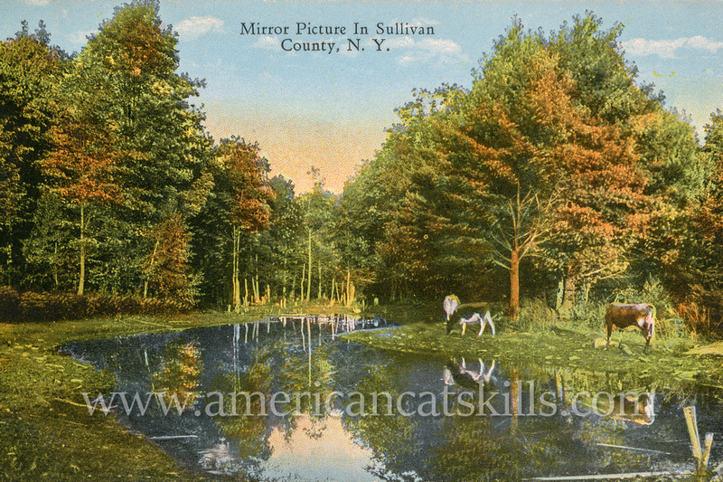 """Trees, cows and blue skies are reflected in a calm lake in this beautiful postcard titled """"Mirror Picture In Sullivan County, N.Y."""" by photographer Otto Hillig."""