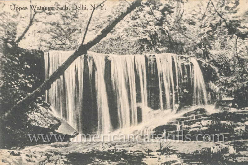 Vintage postcard published by the partnership of Merrill & Humphries of Watauga Falls at Delhi in Delaware County, New York.