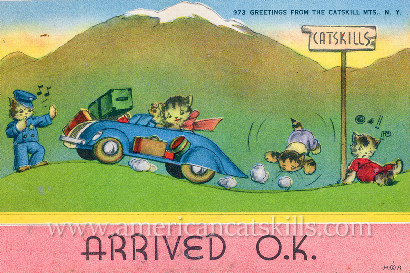 "Vintage postcard by George Greenberg & Son titled ""Arrived O.K."" and ""Greetings from the Catskills"" that depict a cat family in a car following a sign toward the Catskills."