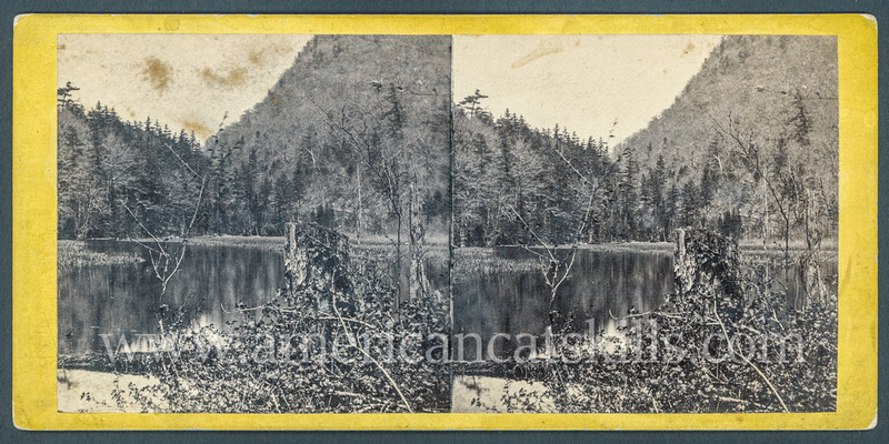 "Vintage E. & H. T. Anthony & Co. stereoview # 9070 titled ""South Lake and Stony Clove Notch"" from ""The Glens of the Catskills"" series."